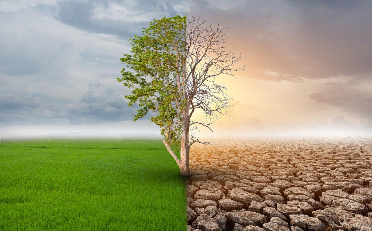klimavaltozas-termeszet