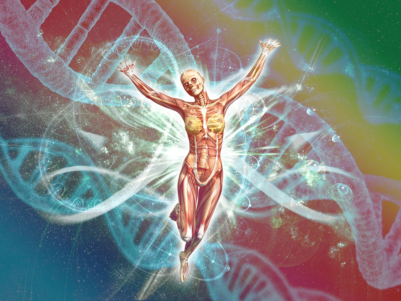 test ember genetika orvos