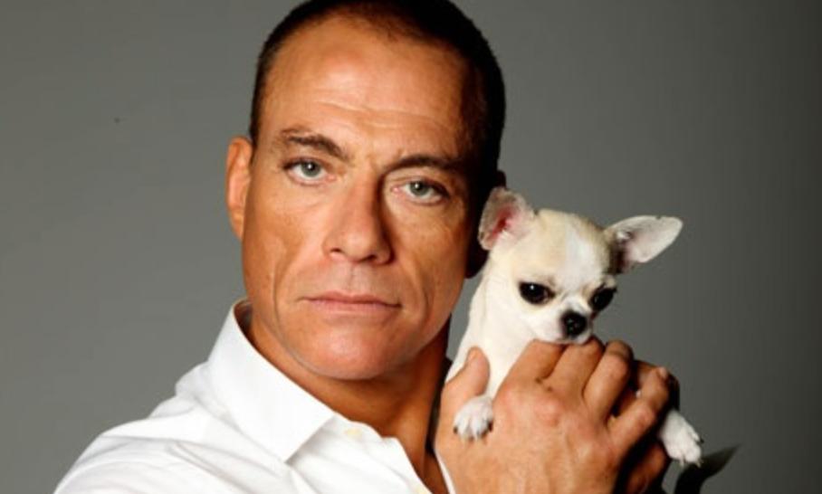 JCVD és kutyája