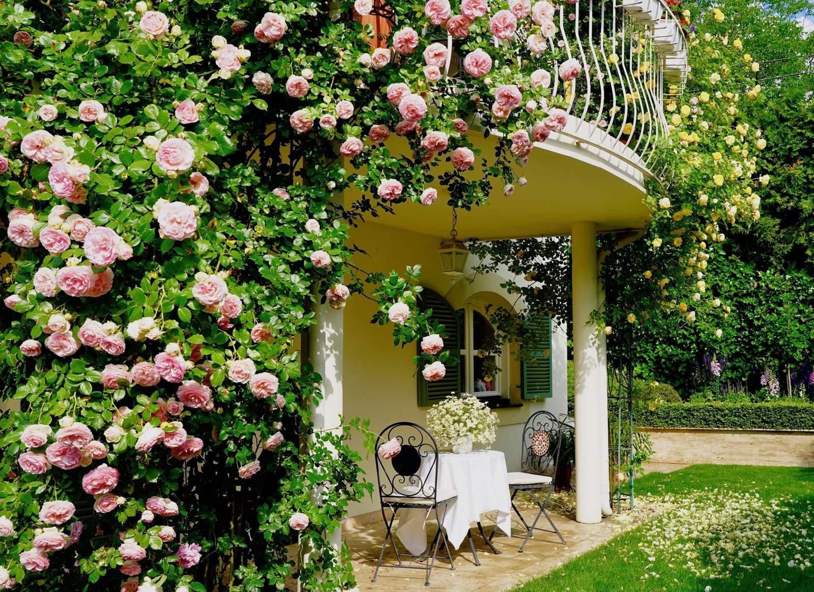 az ország legszebb balkonjai és előkertjei