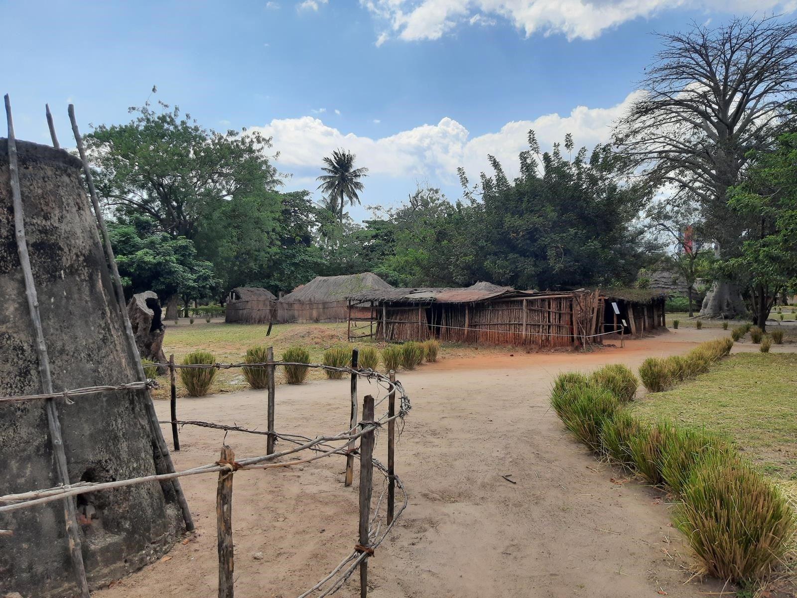 dDani_2021_Tanzania_des (26)