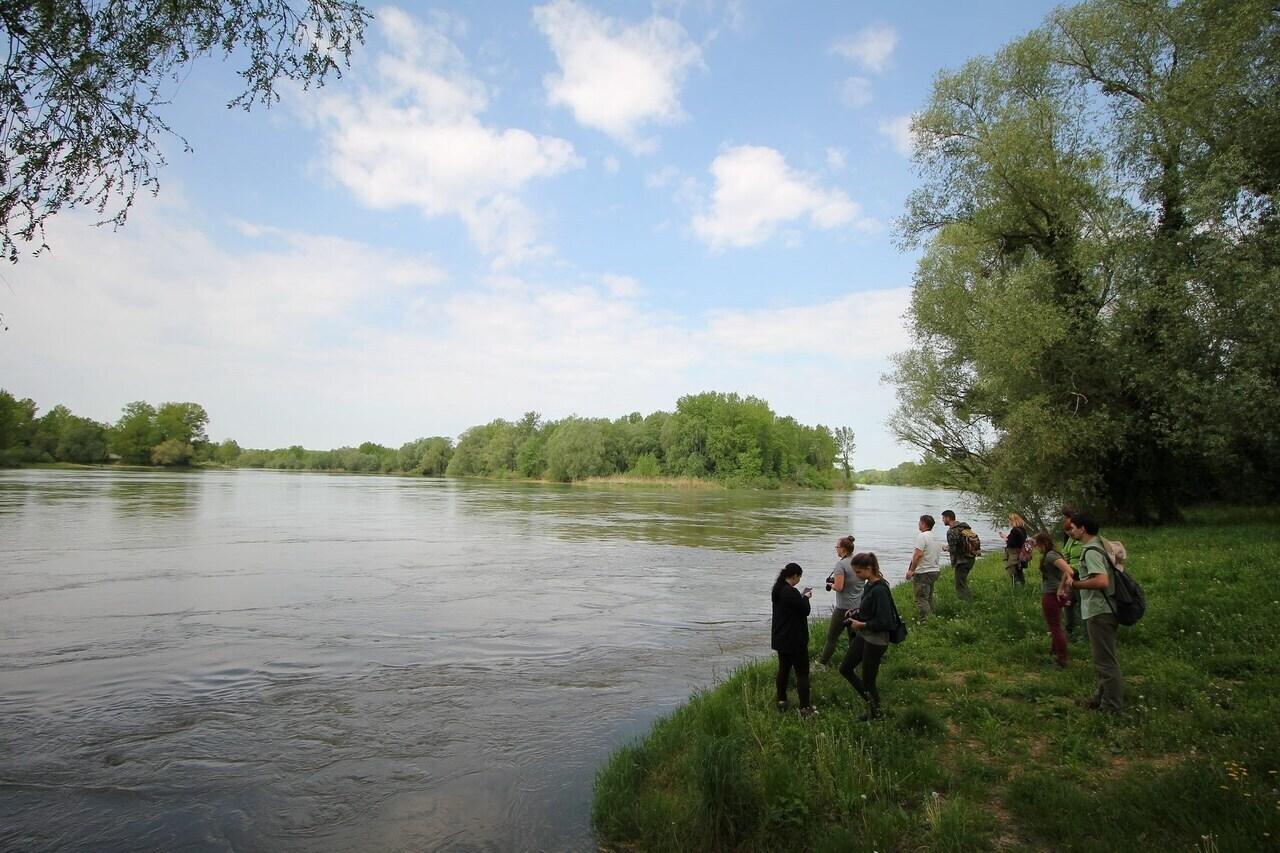 Ötoldalú Mura–Dráva–Duna Bioszféra-rezervátum