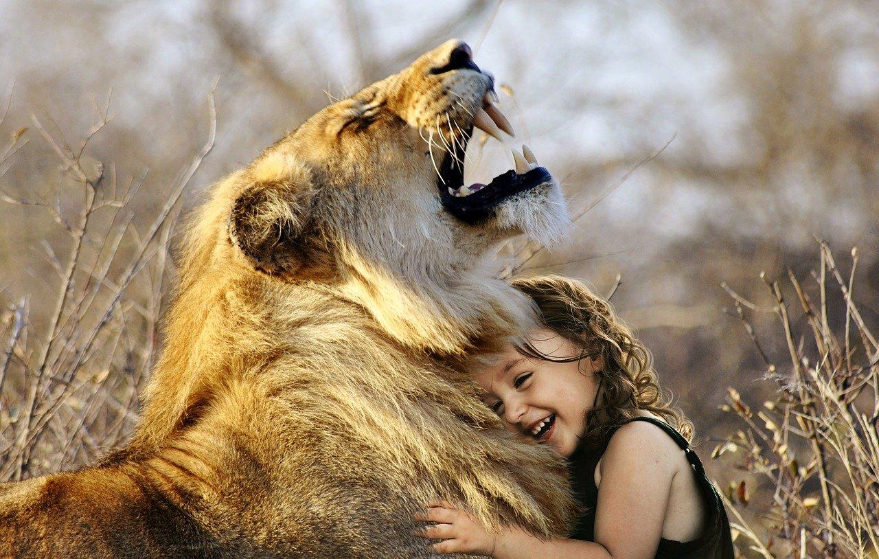 oroszlán kislány
