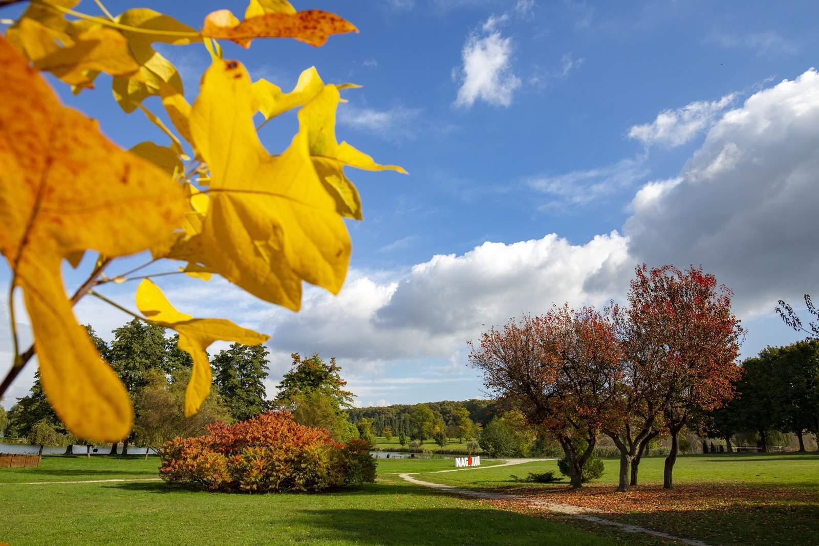 ősz nagykanizsa